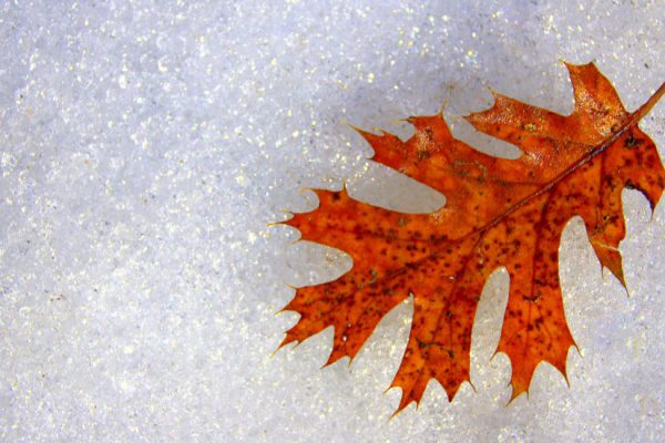 9 proven ways to break the winter blues